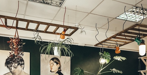 suspended ceiling with plants hanging
